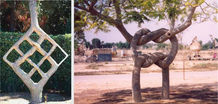 Shaped Trees: Axel Erlandson - Curcit Trees