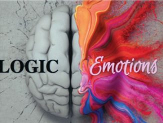 Is Your Brain Ruled By Emotions Or Logic Take This Quiz To Find Out!