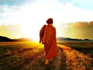 6 Signs You Have Found Your Path in Life